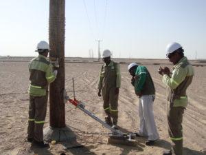 Woodpole Testing